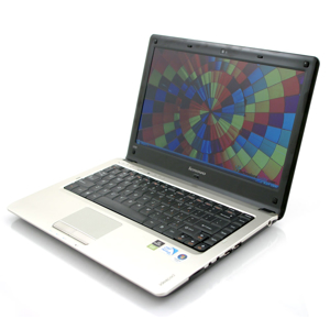 Picture of Phasellus R8050
